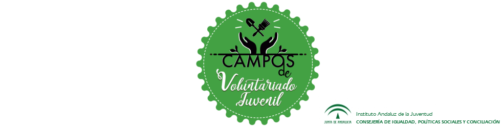 Campos de Voluntariado Juvenil